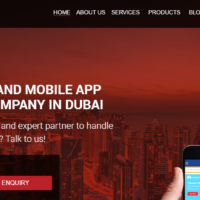 Royex - Web Design and Development Company in Dubai