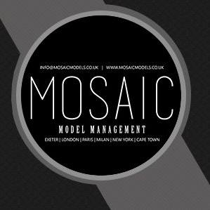 Mosaic-Model-Creative-Production-Management3