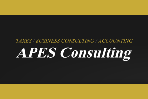 APES Consulting