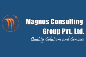 Magnus Consulting Group