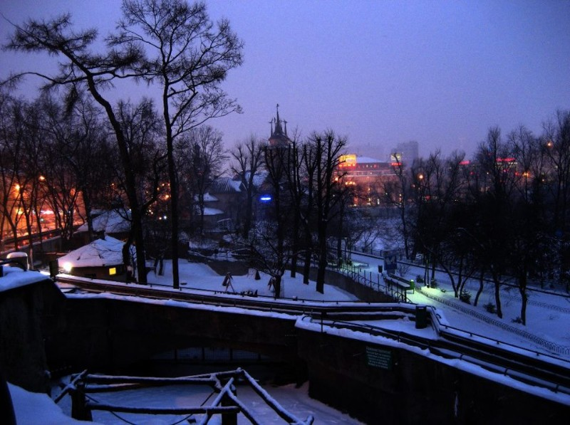 Moscow-Zoo-7